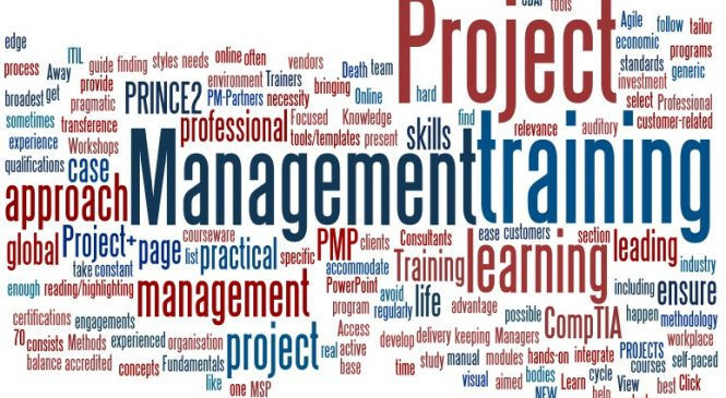 IT Project Management